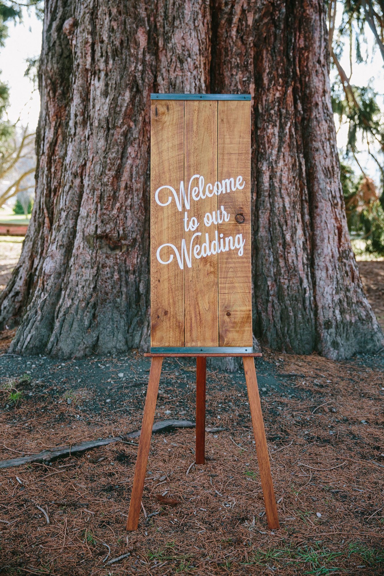 Wanaka Dreams wedding hire